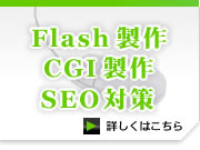 Flash・CGI・SEO対策